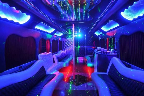 18 Passenger party bus rental