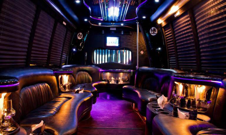 20 Passenger Party Bus Interior 1