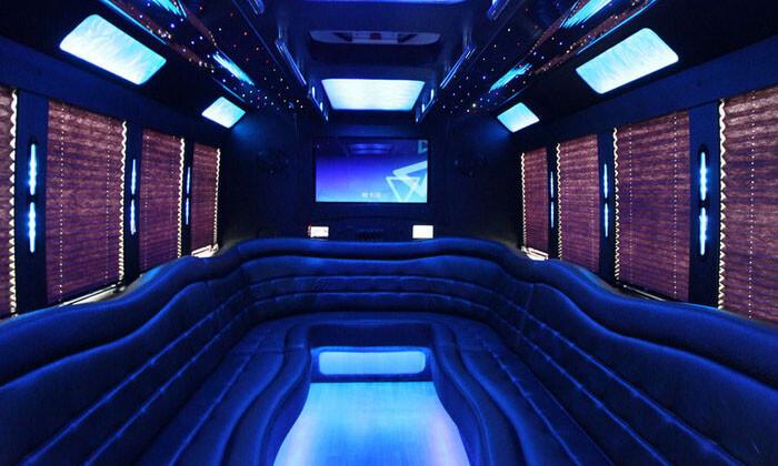 22 Passenger Party Bus Interior 1